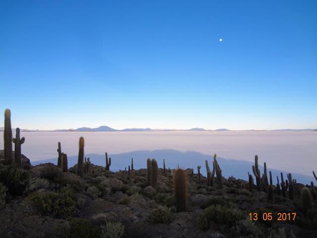 Ilha Incahuasi, no meio do Salar de Uyuni, lado do luar