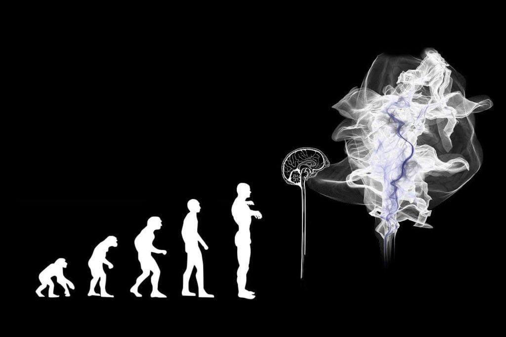 Novos hábitos são imprescindíveis para a evolução