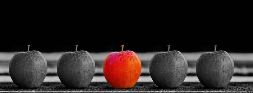 Individualidade e Responsabilidade