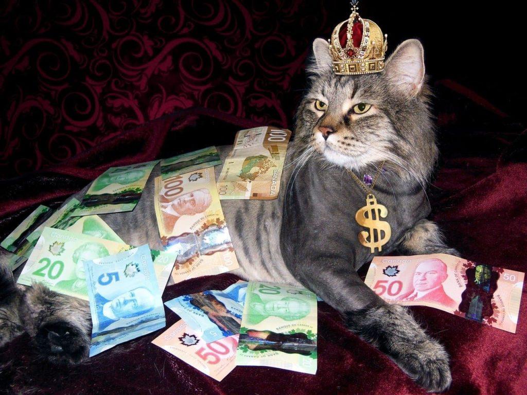 Amigos ricos prejudicam a independência financeira?